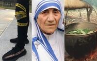 Najlepšie z Refresheru za uplynulý týždeň: Matka Tereza nebola svätá, skúšali sme víno za 1,49 € a objavovali ayahuascový rituál