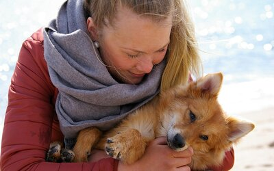 Najnovšia štúdia ukázala, že ľudia majú radšej psy ako iných ľudí. Trpiace zvieratá nás trápia viac než ľudské obete