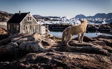 Najstarší dôkaz o živote na Zemi bol objavený v Grónsku a datuje sa až na 3 miliardy rokov dozadu