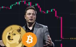Nakúpil som kryptomeny a teraz som stratil vyše 30 % svojich peňazí. Slováci doplácajú na Elona Muska, Čínu aj paniku investorov