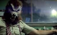 Násilná policajno-gangsterká trailerová jazda s hviezdnym hereckým obsadením? To je Tripple 9