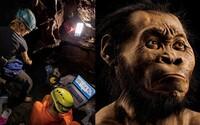 Našli sa pozostatky nového predchodcu človeka. Volá sa Homo naledi, pravdepodobne si osvojil rituály a objavili ho v Juhoafrickej republike