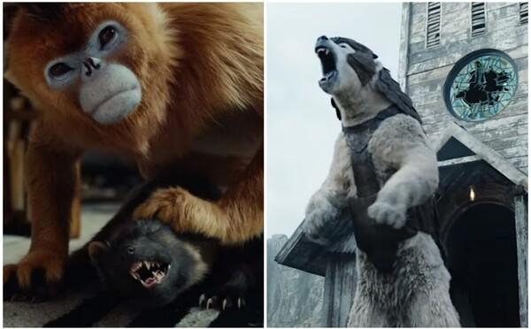 Nástupca Game of Thrones sa odhaľuje v napínavom traileri. His Dark Materials bude ďalším obrovským fantasy seriálom