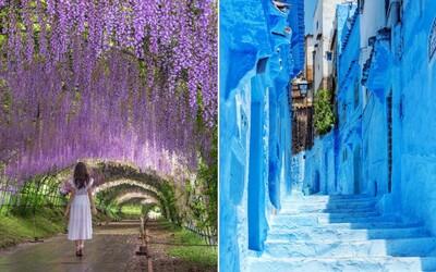 Nejbarevnější místa světa: Island, Maroko nebo Nizozemsko nabízejí lokality, které jsou pastvou pro oči