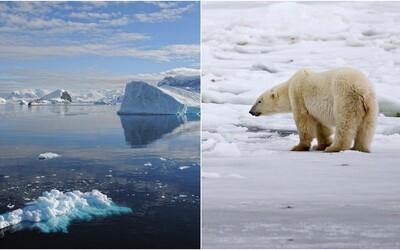 Nejstarší ledovec v Arktidě se poprvé začal rozpadat. Vědci varují před ohrožením života ledních medvědů