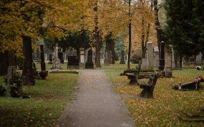 Německý hrobník čelí odpornému obvinění: Zemřelým prý vytrhával zlaté zuby předtím, než je pohřbil