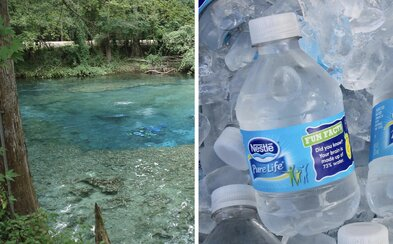 Nestlé chce odčerpávat téměř 4 miliony litrů z floridských pramenů denně, aktivisté se bouří