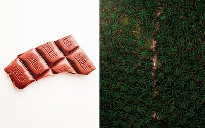 Nestlé vysvetľuje, prečo neprestalo používať palmový olej. Interaktívny web ťa prevedie celým procesom