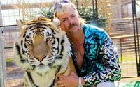 Netflix oznamuje 2. sériu Tiger Kinga. Uvidíme ju už koncom roka, z väzenia sa na nej zúčastnil aj Joe Exotic