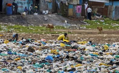 New York zakázal igelitky. 20 milionů Američanů dá plastovým taškám sbohem