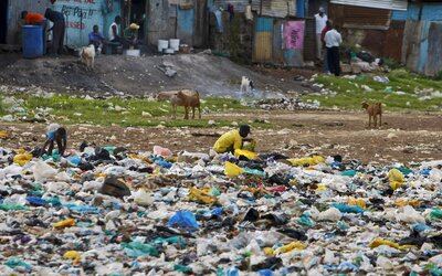 New York zakázal igelitky. 20 miliónov Američanov dá plastovým taškám zbohom