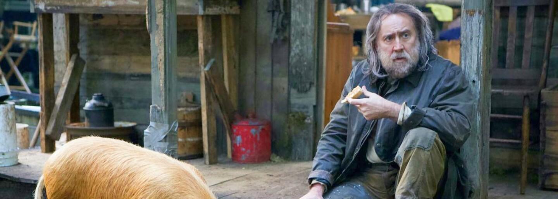 Nicolasi Cageovi unesou nejlepšího kamaráda – prase. Tiché drama se rázem změní v mrazivý thriller o pomstě