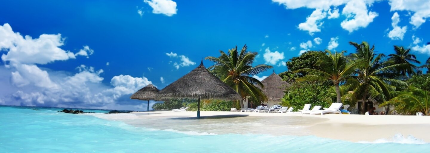 Niekto zrejme pozabíjal roztomilé plávajúce prasiatka na Bahamách a ich mŕtve telá nahádzal do vody. Miestni nechápu, čo sa mohlo stať