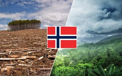 Norsko je první zemí, která netoleruje odlesňování. Pomáhá obnovit pralesy a starat se o přírodu