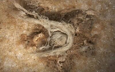 Nová studie potvrzuje, že lidé byli již před 50 000 lety pokrokoví v používání technologií
