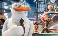 Nový animák nám ukáže, ako bociany doručujú deti k rodinám
