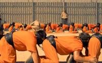 Nový trailer k Lidské stonožce slibuje extrémně zvrácenou a nechutnou podívanou