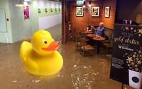 O nič sa nestarajúci starček sediaci v zatopenom Starbuckse inšpiroval zábavné fotomontáže. Noviny sú niekedy najdôležitejšie