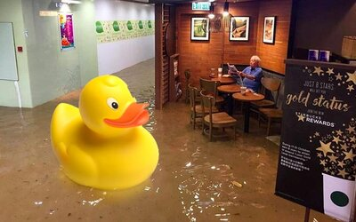 O nic se nestarající stařík sedící v zatopeném Starbucksu inspiroval zábavné fotomontáže. Noviny jsou někdy nejdůležitější
