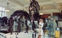 Obrovská kostra Tyrannosaura Rexa môže byť tvoja za 6 miliónov dolárov