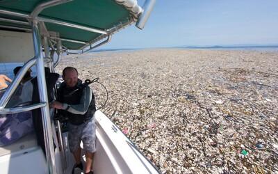 Oceány plné nechutného odpadu. Tony plastových príborov, vreciek či igelitiek ničia našu planétu