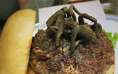 Ochutnal bys burger s opečenou tarantulí? Americká restaurace doplňuje své pokrmy i masem ze želvy nebo aligátora
