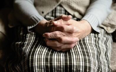 Odvážna slovenská babka pomohla dolapiť podvodníka, ktorý sa vydával za jej vnuka. Vyrobila fiktívny balíček s peniazmi