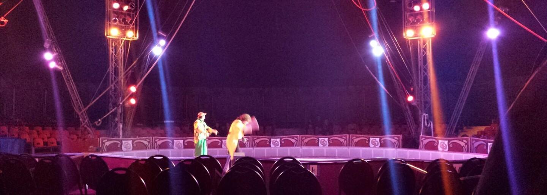 Ohrozený biely nosorožec trpí pri vystúpeniach v ruskom cirkuse. Musí poslúchať príkazy a povoziť trénera na svojom chrbte