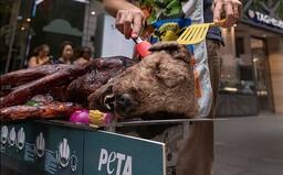 Opekaný pes na námestí vydesil malých školákov. PETA týmto spôsobom bojovala za práva zvierat