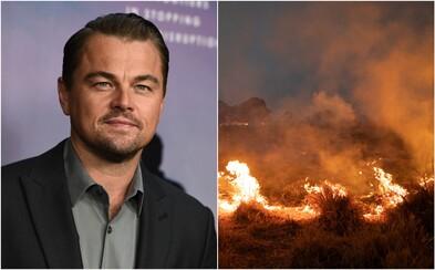 Organizace, kterou spoluzakládal Leonardo DiCaprio, daroval 5 milionů dolarů na záchranu amazonského pralesa