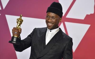 Oscara dostanou už jen filmy splňující kvóty na menšiny či LGBT+ komunitu