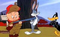 Pamatujete si na animák s Bugsem Bunnym, Daffym či Kojotem plný gagů a nezapomenutelných vtipů?