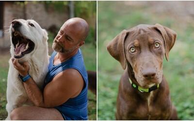 Pes cítí všechno, i to, jaký jsi měl den. Zjistí to z tvého pachu, pohybů i z mimiky obličeje, říká psí psycholog Richard Ulianko