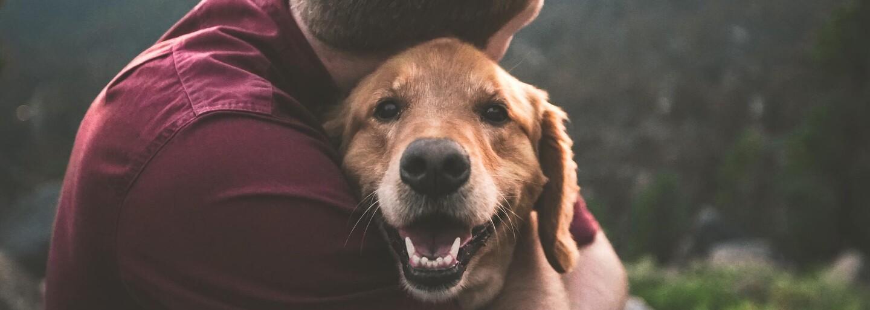 Pes mu při pádu Dvojčat zachránil život. Nevidomý muž mluví o tom, jak se mu podařilo 11. září uniknout smrti
