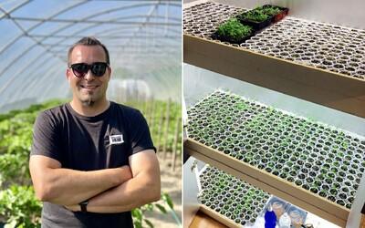 Pestovateľ čili papričiek Čípoš Laci: Stačí, že mi vo fóliovníku na pár hodín vypadne elektrina, a celoročná úroda mi zmrzne