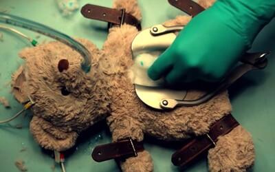 PETA v reklame pitvá medvedíka. Ničením plyšovej hračky poukazuje na problematiku testovania na zvieratách