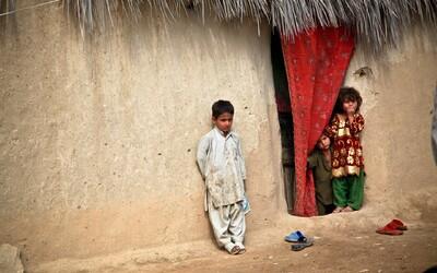 Pětiletý afghánský chlapec zemřel na otravu houbami, které snědl v uprchlickém táboře v Polsku