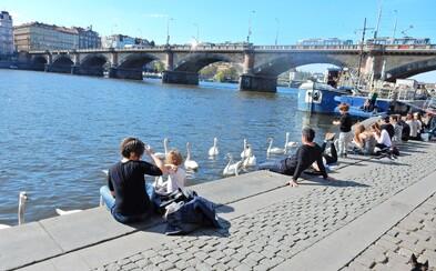 """Plánovaná revitalizace náplavky ji toto léto spíše """"umrtví"""". Dělnické práce uzavřou na nejteplejší měsíce oblíbené provozovny u řeky"""