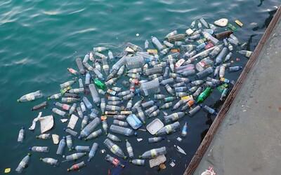 Plastového odpadu je v Tichém oceánu 16krát více, než se dosud vědělo. Zabíjí mořské živočichy a je rizikem i pro člověka