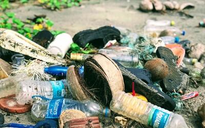 Plasty objevily v tělech zvířat už i na jednom z nejodlehlejších ostrovů světa. Znečištění hrozí celému ekosystému