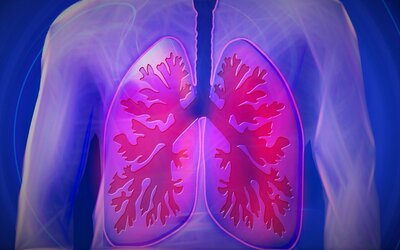Pľúca produkujú krv. Znamená toto prekvapujúce zistenie prevrat v medicíne?