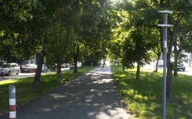 Plusy aj mínusy bratislavských cyklotrás: Oplatí sa letný výlet na bicykli?