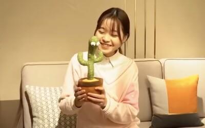 Plyšový kaktus rapuje polsky o kokainu a depresi. Čínská hračka pro děti pobouřila veřejnost