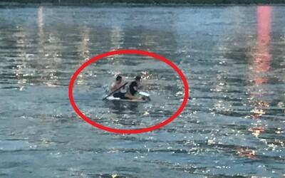 Po Dunaji sa plavili na palete vyplnenej polystyrénom. Dvojica poskytla návštevníkom pláže neuveriteľný pohľad
