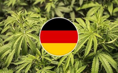 Po predpisoch od lekára aj pestovanie. Nemecko do roku 2019 vybuduje vlastný marihuanový priemysel