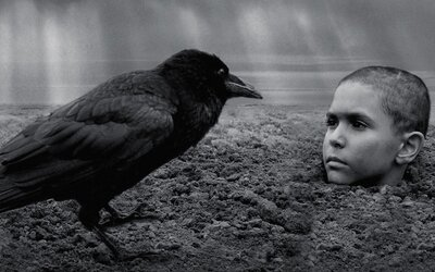 Počas projekcie českého filmu Pomaľované vtáča odchádzali diváci zo sály. Bol na nich príliš explicitný