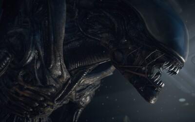Pokračování Aliena s Ripleyovou se zřejmě nedočkáme. Podle režiséra Blomkampa jsou šance mizivé