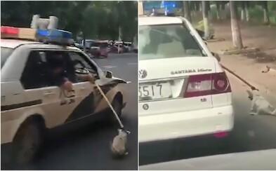 Policajti ťahali bezbranného psa popri aute až na stanicu. Na svoju obhajobu uviedli, že si zabudli zobrať klietku