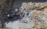 Polícajti vykopali 12 zavraždených tiel v okolí Dunajskej Stredy. Má ísť o obete gangu Sátorovcov