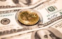 Policajti zhabali Bitcoin za 50 miliónov eur, ale vlastník peňaženky im odmieta prezradiť heslo
